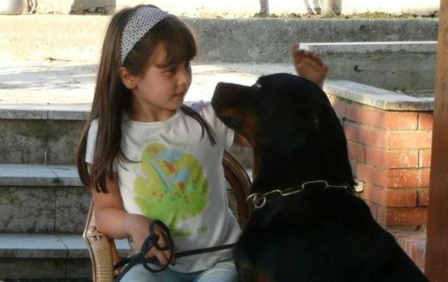 Bambini-e-rottweiler VENDITA Rottweiler - Dell'Antico Guerriero