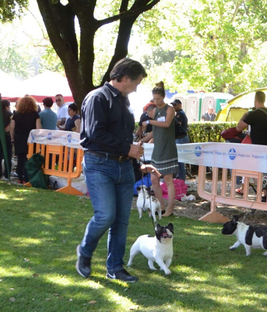 IMG-20180604-WA0007-875x1024 International Dog Show - Rieti 12 Maggio 2018 Bouledogue Francese Breaking News Expo Francesco Zamperini In Evidenza News