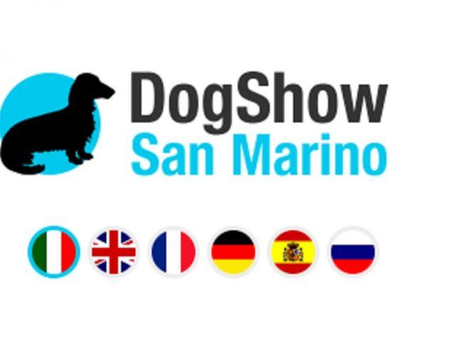 San-Marino-Dog-Show-Successo-Allevamento-Dell-Antico-Guerriero-640x480 IL BLOG - Dell'Antico Guerriero