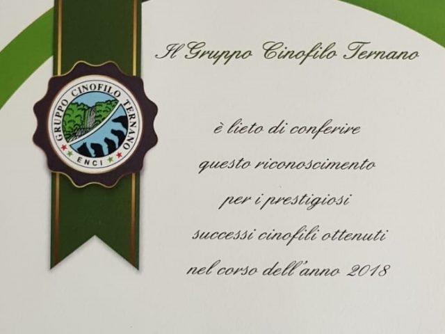 Riconoscimento-a-Francesco-Zamperini-Gruppo-Cinofilo-Ternano-640x480 IL BLOG - Dell'Antico Guerriero