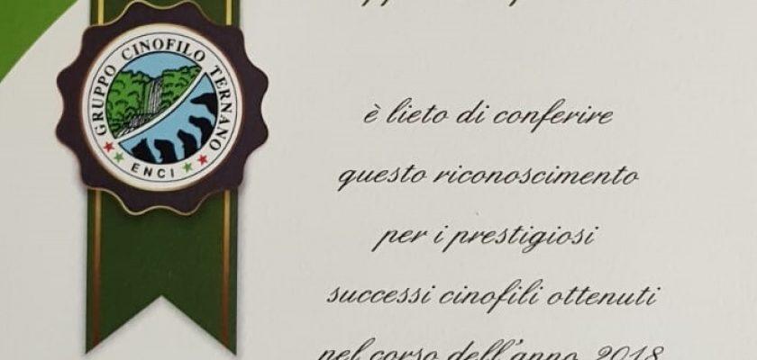 Riconoscimento a Francesco Zamperini - Gruppo Cinofilo Ternano