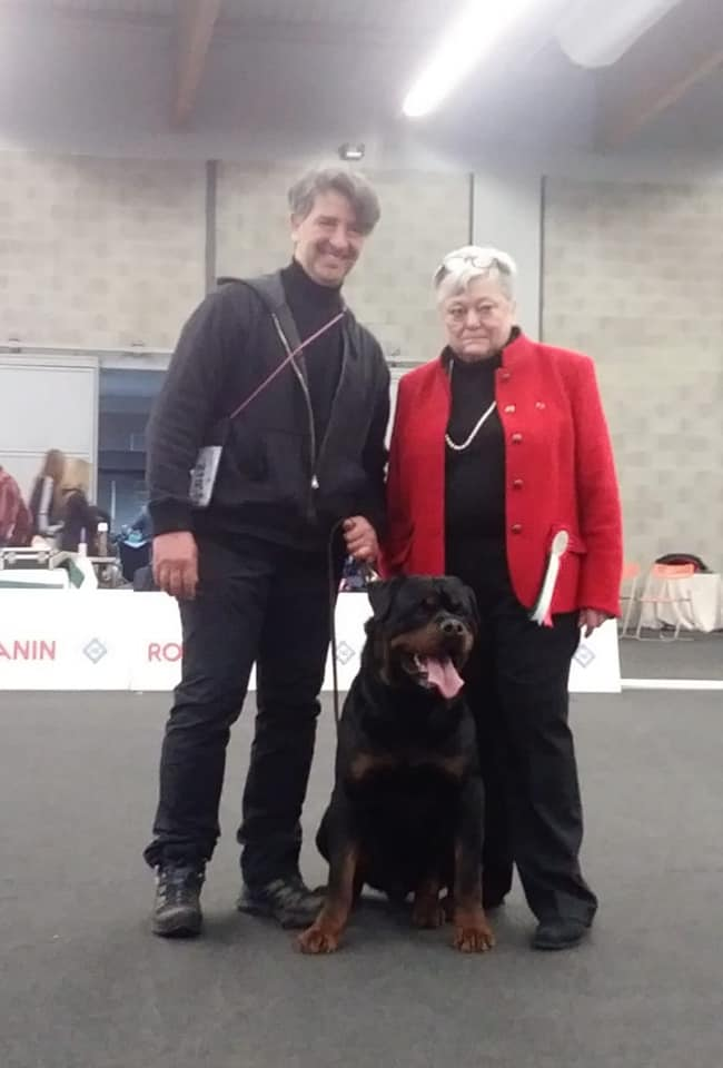 Yarno-DellAntico-Guerriero-Francesco-Zameprini-Jeannette-Seltz Layout Cane 2019 Cucciolate Cucciolate - Cuccioli Disponibili Cucciolate - Rottweiler