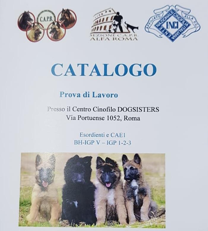 Copertina-Catalogo-BH-IGP-Roma-13-Aprile-2019 Layout Cane 2019 Cucciolate Cucciolate - Cuccioli Disponibili Cucciolate - Rottweiler