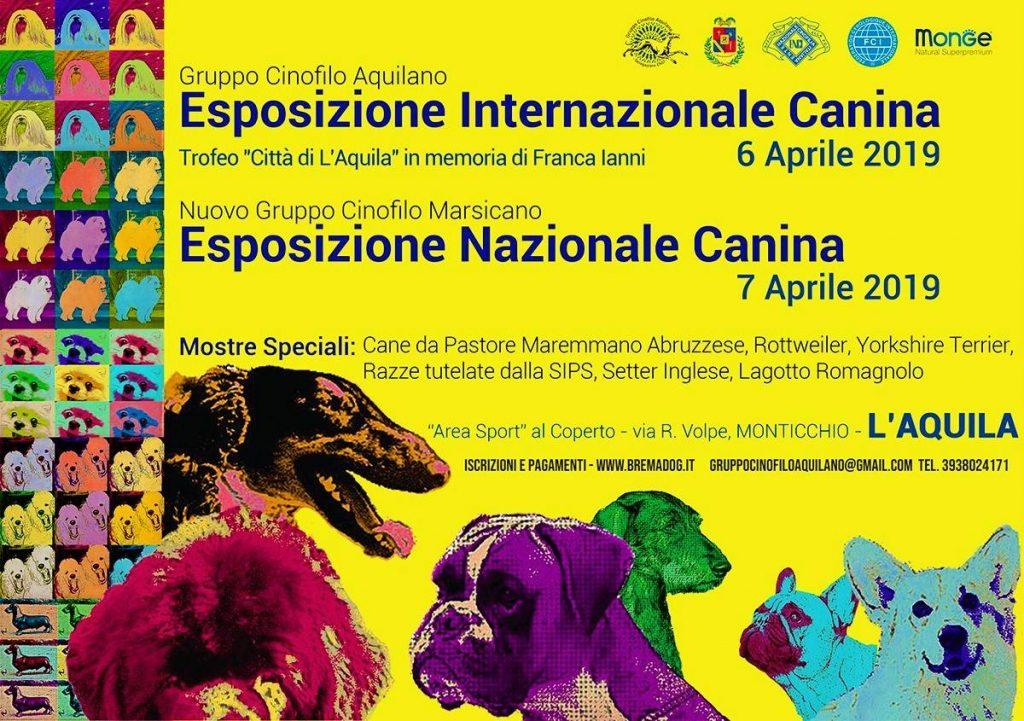 Expo-Nazionale-ENCI-DellAquila-06-07-Aprile-2019-1024x721 Layout Cane 2019 Cucciolate Cucciolate - Cuccioli Disponibili Cucciolate - Rottweiler