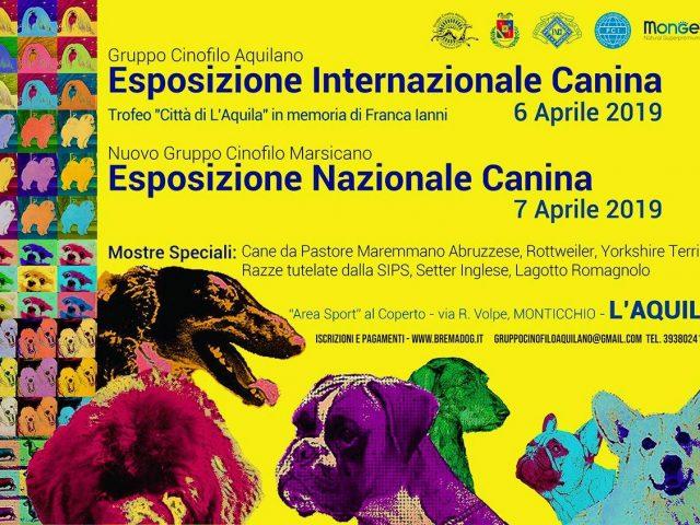 Expo-Nazionale-ENCI-DellAquila-06-07-Aprile-2019-640x480 IL BLOG - Dell'Antico Guerriero