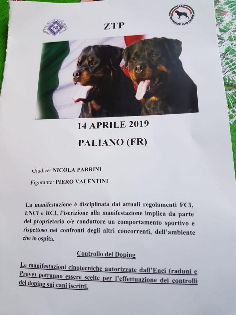 WhatsApp-Image-2019-04-14-at-21.20.57-768x1024 Prova di Lavoro - ZTP - Paliano 14 Aprile 2019 Addestramento Expo Francesco Zamperini In Evidenza News Più Lette Prove Lavoro Varie
