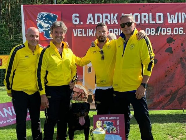 ADRK-WORLD-WINNER-SHOW-2019-Yarno-Dellantico-Guerriero-Allevamento-Rottweiler-02-640x480 YARNO Dell'Antico Guerriero - Last Version - 04/10/2019