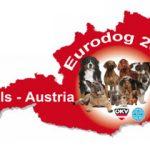 EDS-2019-Banner-150x150 YARNO Dell'Antico Guerriero - 20 Aprile 2019 Allevamento Breaking News Cani - Soggetti in Allevamento Expo Francesco Zamperini In Evidenza News Rottweiler