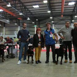 06-10-2019-Internazionale-DOGSHOW-BASTIA-UMBRA-Francesco-Zamperini-Allevamento-DellAntico-Guerriero-250x250 YARNO Dell'Antico Guerriero (BOZZA 03)