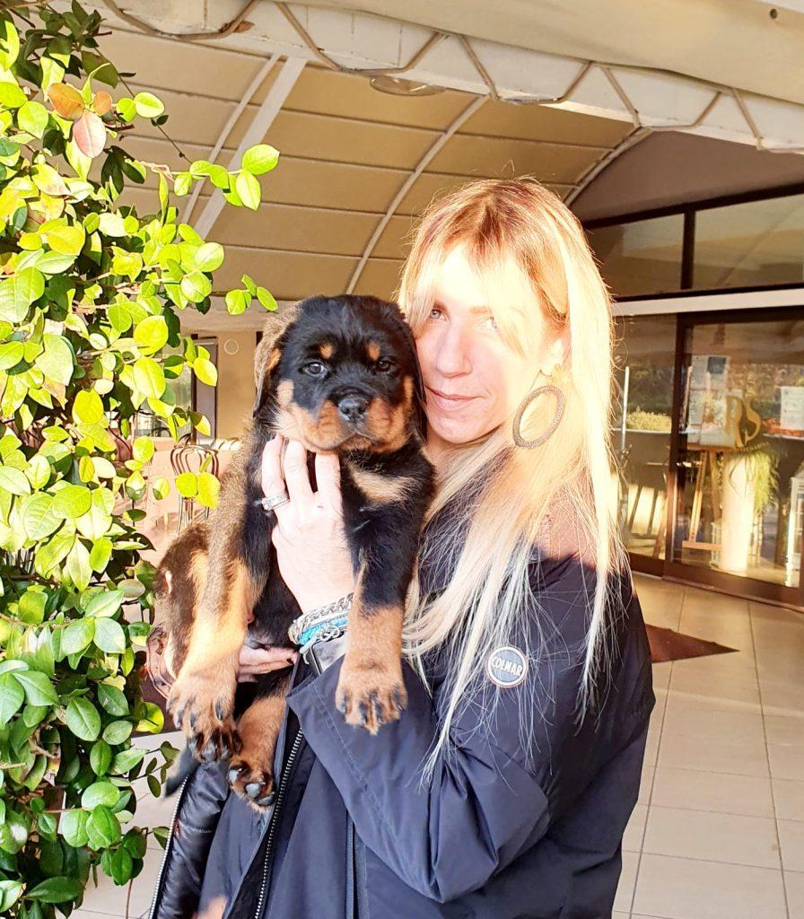 """RIDDICK-DellAntico-Guerriero-896x1024 Lettera """"R"""" - Tutti i Cuccioli con le nuove Famiglie Allevamento Francesco Zamperini News News - Zamperini Rottweiler Scelte da Zamperini"""