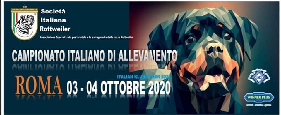 Campionato-Italiano-di-Allevamenor-SIR-2020-Logo CAMPIONATO SOCIALE SIR 2020 - YARNO Dell'Antico Guerriero Allevamento Francesco Zamperini News News - ZamperiniロットワイラーはZamperiniをショートカット