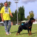 Nyla-Diesel-DellAntico-Guerriero-Campionato-Sociale-SIR-2020-01-150x150 Stage Addestramento con Vit Glisnik - Roma 16 e 17 FEbbraio 2018 Addestramento Francesco Zamperini News